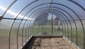 Обработка теплицы из поликарбоната весной