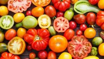 Лучшие семена томатов для теплицы в подмосковье